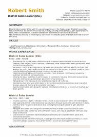 Direct Sales Resumes District Sales Leader Resume Samples Qwikresume