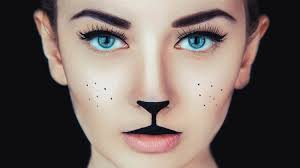 simple cat makeup ideas for make beauty simple