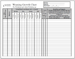 Weaning Chart Weaning Growth Chart For Parrot Life Stages Hari