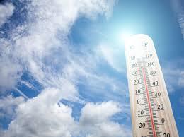 Neue Hitzewelle Rollt An Bis Zu 40 Grad Hitze In Deutschland