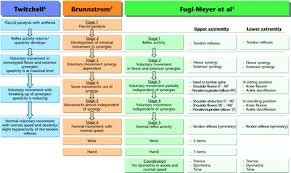 Brunnstrom Stages Of Recovery Hierarchical Properties Of