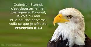 25 Versets Biblique sur le Respect - DailyVerses.net