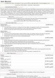 Arts, Entertainment and Media Industry Media Practitioner Resume Example