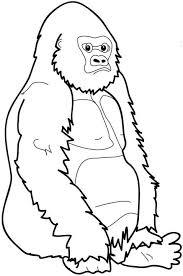 Kids N Fun Kleurplaat Bokito De Gorilla Bokito De Gorilla