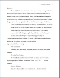 Apa Format Essay Example   Image of an APA Paper Format Example