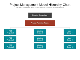 Project Management Model Hierarchy Chart Powerpoint Slide