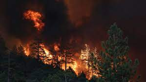Tamarack Fire: 7 structures lost ...