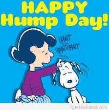 cute cartoon happy hump day wish