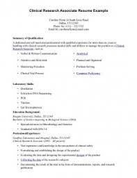 Online Professional Resume Writing Services Seattle Links Essay