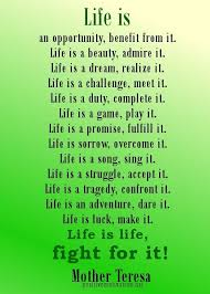 Inspirational Quotes About Life Google Search Sayings Extraordinary Inspirational Quotes About Life And Happiness