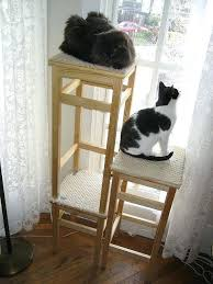 Chic cat furniture Tall Excellent Chic Cat Furniture Fresh Inspiration Cat Furniture Ideas Litter Box Proof Hack Shabby Chic Cat Excellent Chic Cat Furniture Jlroellyinfo Excellent Chic Cat Furniture Chic Cat Furniture Cat Tree Tower Condo
