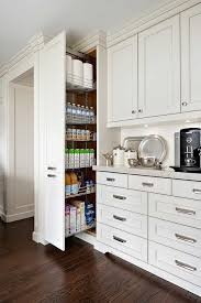 impressive shallow floor cabinet 25 best kitchen pantry cabinets ideas on