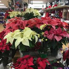 garden centers nj. Photo Of McNaughton\u0027s Garden Center - Cherry Hill, NJ, United States Centers Nj C