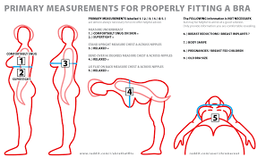 how to measure breast size my trans history with bras na tasha tr oop medium