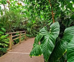 events edible tour of the brooklyn botanic garden