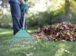 Fall Gardening Chores You CANu0027T Forget  Bless My WeedsFall Gardening