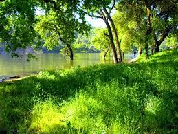 ⭐️ Cảnh Đẹp Mùa Xuân Trên Thế Giới ⭐️ Images?q=tbn:ANd9GcSuMMmvQfN9fA7uEkqVjanvTxMttPzEBtQMLbypEyB3KNhBNsMm