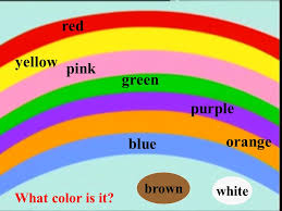 Starter Unit 3 Period 1 Period 1 Red Yellow Pink Green Purple