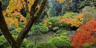 Japanese Garden Strolling Pond Garden Portland Japanese Garden