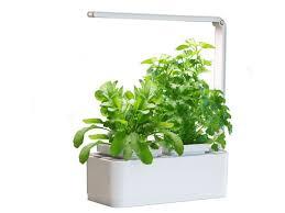 hydroponic herb garden. Videos Hydroponic Herb Garden M
