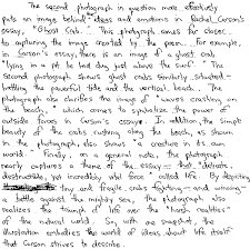 essays for college english article custom writing service sample reflective essays english program csu channel islands