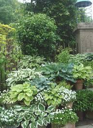 Pin by Ann Kirchner on Gardening | Shade garden, Shade garden design, Hosta  gardens
