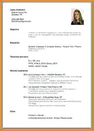 How To Do A Resume For A Job Mesmerizing Resume Job Experience Clean Layout Resume No Work Experience College
