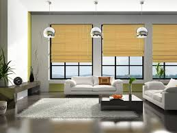 blinds blinds or curtains55