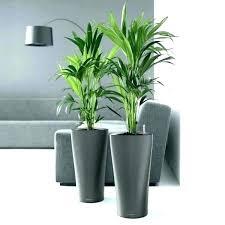 home depot plant holders indoor plant holders indoor plant holders indoor plant pots planters large indoor
