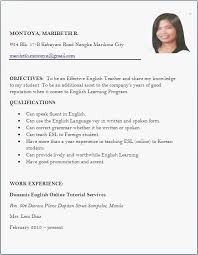 Resume Templates For Teachers Cool Sample Resumes For Teachers Professional How To Make A Resume For