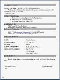 Resume For Job Application For Freshers Resume Corner