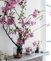 feng shui plant office. Feng Shui Flower Symbols - Cherry Blossoms Plant Office