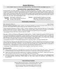 SQL Server Developer Resume Sample Free Resumes Tips