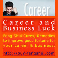 feng shui cures and remedies to improve good fortune for your career business buy feng shui