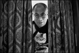 Image result for the dalai lama's cat