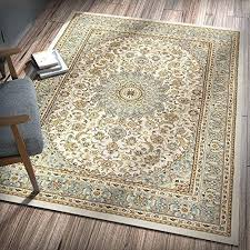 easy to clean rugs how