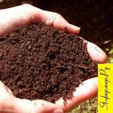 Почвы Я фермер ru Почвы