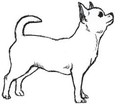 Chihuahua Clipart Free Download Clip Art Free Clip Art On