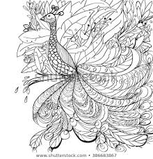 Coloring Book Pages Peacock Flowers Garden Stock Vector Royalty