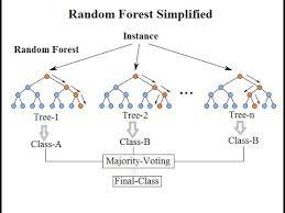 Random Forest Or Random Decision Forest Primo Ai