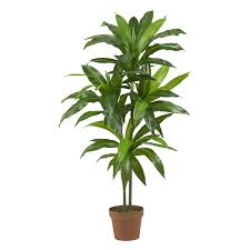 Decorative Indoor Trees Shop Amazoncom Artificial Trees Shrubs