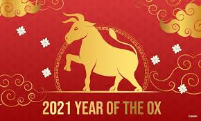 Image result for the year of the ox
