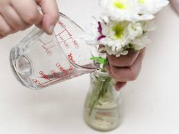 if you don t have flower food you can easily make your own put one tablespoon of sugar into the water the sugar will help nourish the flowers and promote