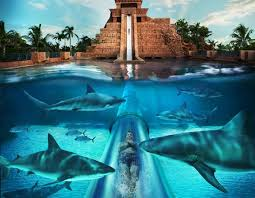 underwater water slide. Beautiful Slide Underwater Water Slide Wow Canu0027t Get Much Cooler  Leap Of Faith  Atlantis Paradise Island Bahamas With Water Slide