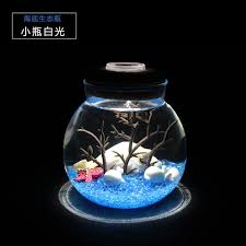 special gift for girl best friend diy small night lamp valentine gift white light small sea bottom ecological bottle