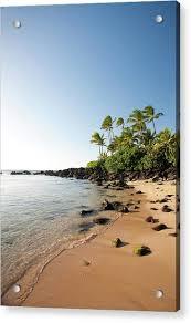 Laniakea Beach By M M Sweet