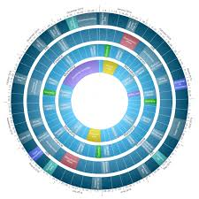 Circle Calendar Template Calendardisc Customized Interactive Circle Calendar