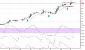 Confipet Stock Price And Chart Bse Confipet Tradingview
