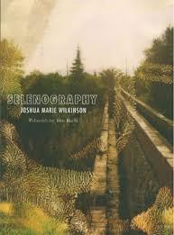selenography joshua marie wilkinson sidebrow books