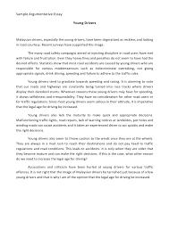 personal narrative essay example narrative essay examples narrative essay example alisen berde
